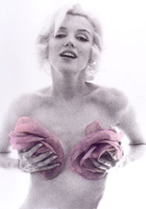 Marilyn Monroe Shot By Bert Stern